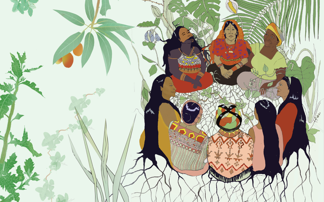 Living Pharmacies of Mesoamerica: community healers share ancestral knowledge in a new book