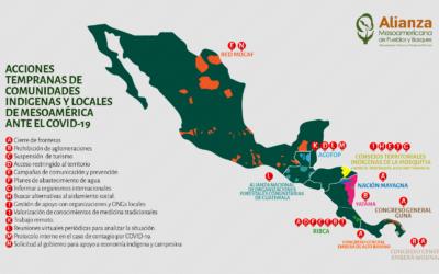 Pueblos indígenas y comunidades locales de Mesoamérica responden a pandemia de COVID-19 desde territorios