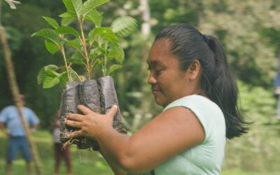 Fondo Territorial Mesoamericano lanza convocatoria para financiamiento de propuestas incluyentes hacia cambio climático desde territorios