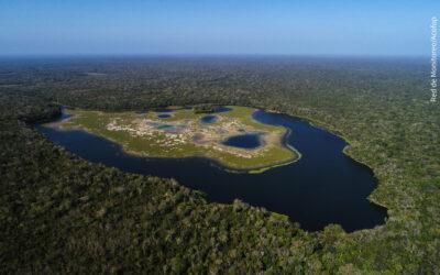 Selva Maya y Amazonía en intercambio sobre Forestería Comunitaria