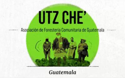 Utz Che' de Guatemala recibe Premio Ecuatorial por inspirar al mundo en la coexistencia con la naturaleza