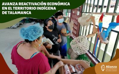 Avanza reactivación económica en el territorio indígena de Talamanca