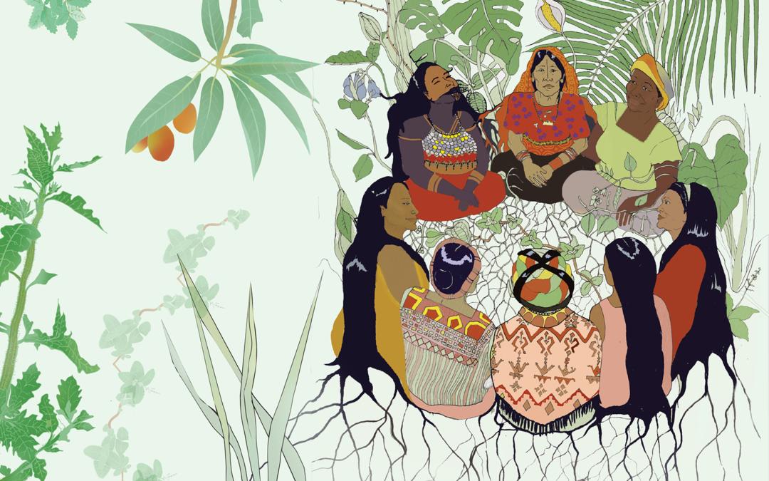 Farmacias Vivientes de Mesoamérica: sanadoras comunitarias comparten conocimiento ancestral en nuevo libro