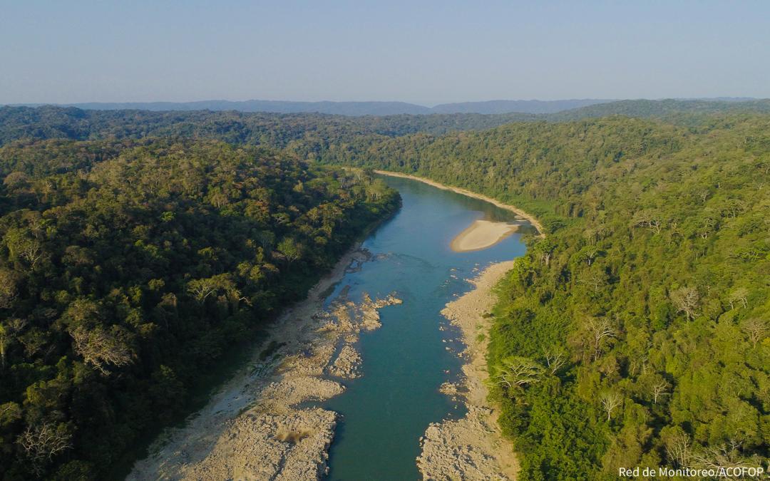 ACOFOP es elegido como observador de América Latina y el Caribe ante el Fondo Cooperativo para el Carbono de los Bosques